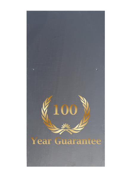 ca33-100-web-600x600